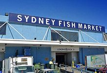 Sydney Fish Markets redevelopment stage 1